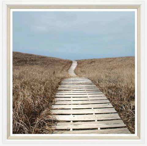 TGTAJ679-612L PRINT BOARDWALK THROUGH THE GRASS WHITE FRAME 43X43
